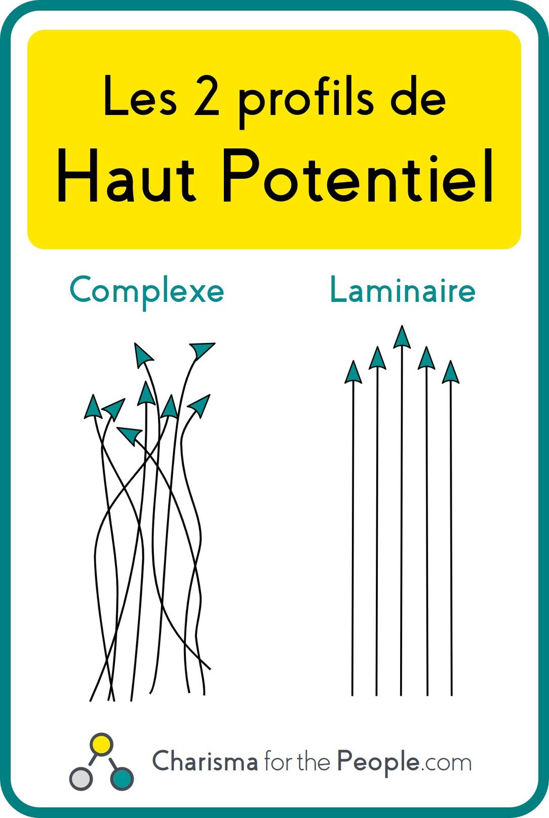 Surdoué complexe et surdoué laminaire, comparaison des deux profils haut potentiel complexe et haut potentiel laminaire