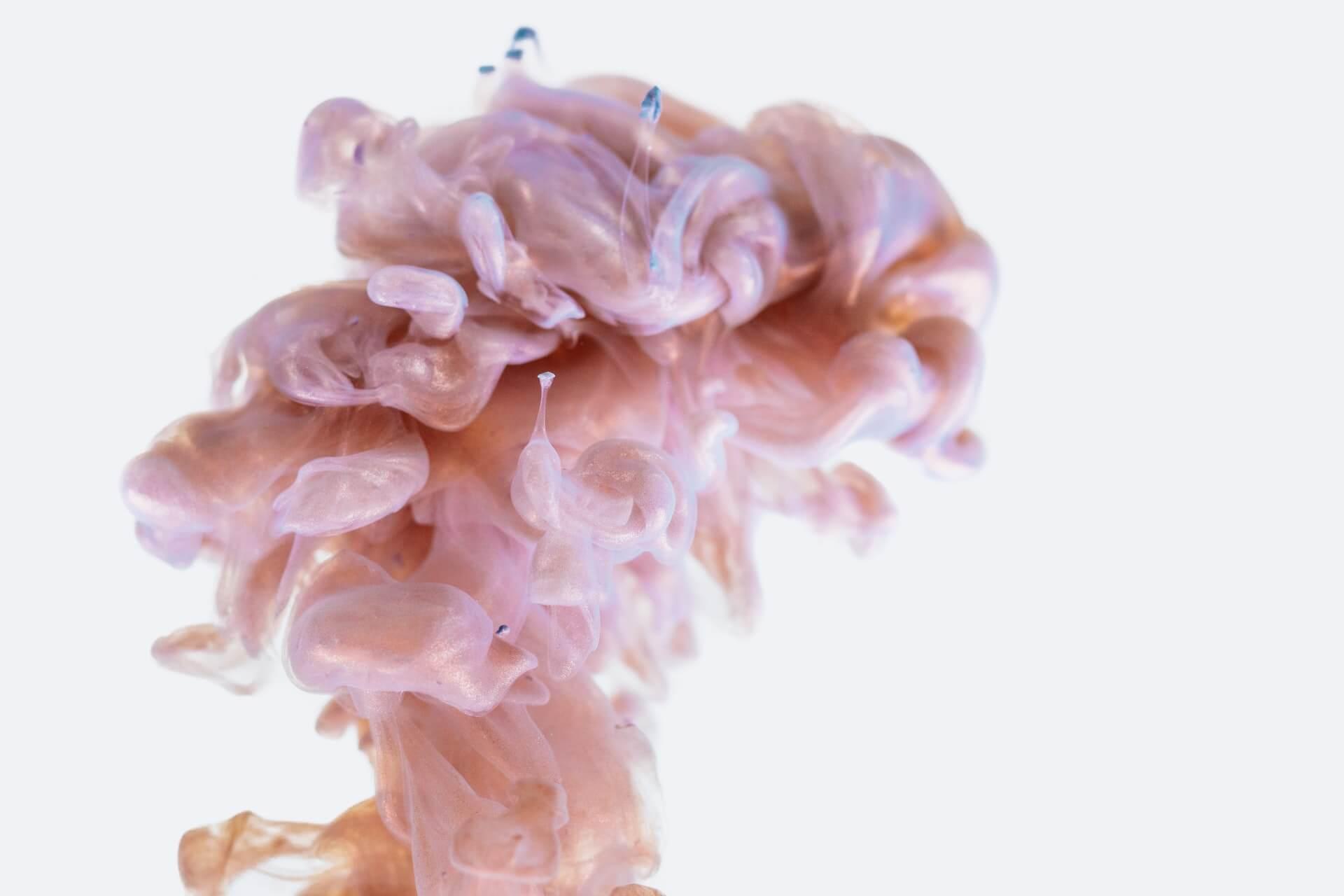 Cerveau droit cerveau gauche chez les surdoués complexes et laminaires