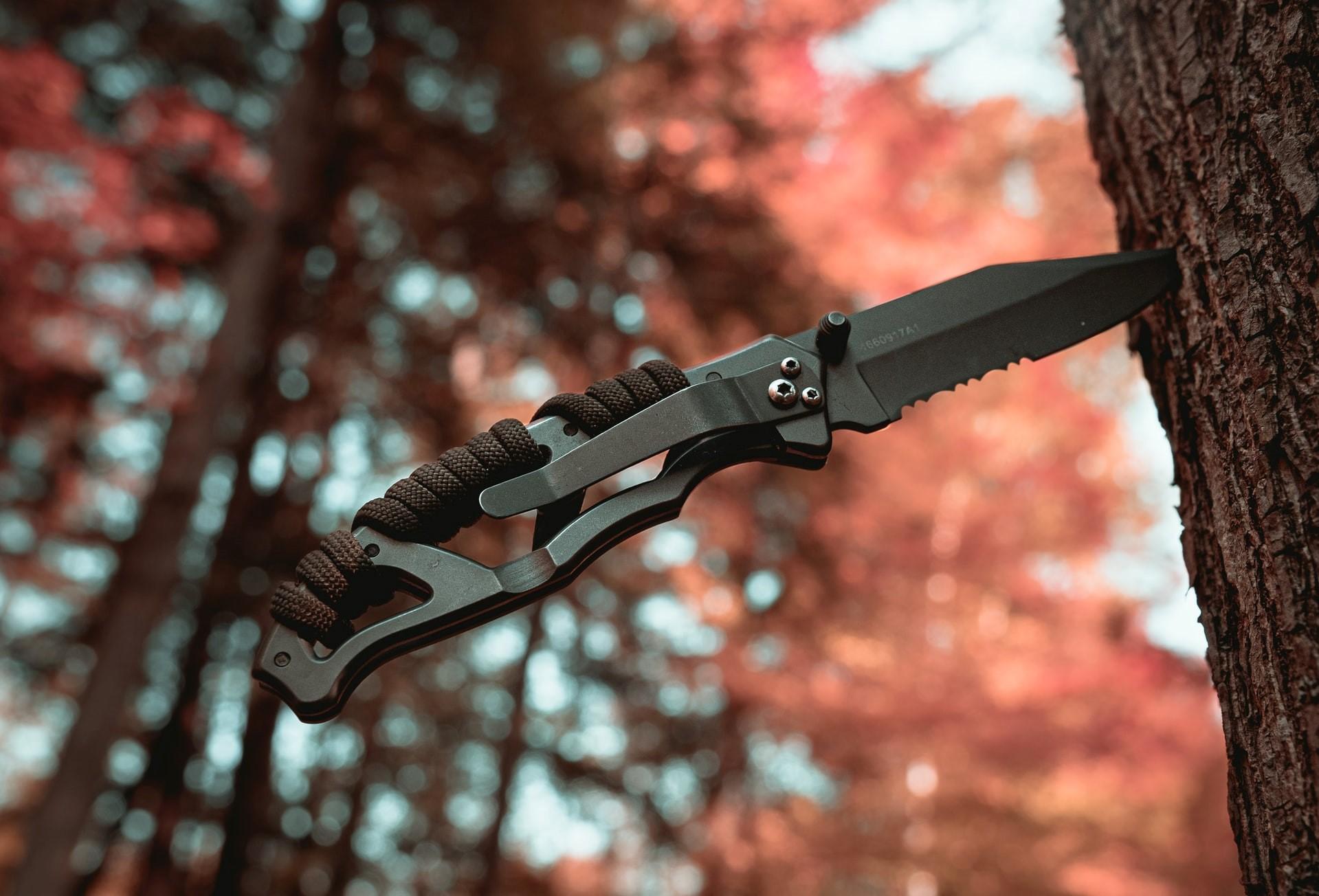 Couteau planté dans un arbre - Schémas d'inadaptation de Young & mécanismes de défense